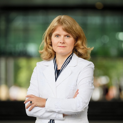 2019 Journal of Polymer Science Innovation Award Winner: Patricia Dankers