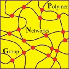 2020 Polymer Networks Group Conference